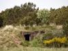 Bunker mit Blume