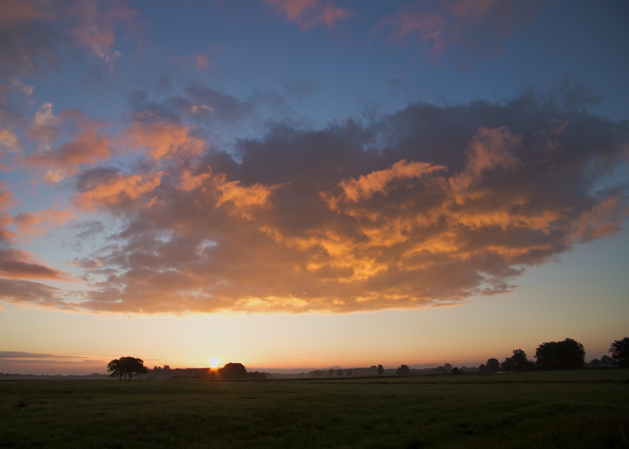 Morning sun V