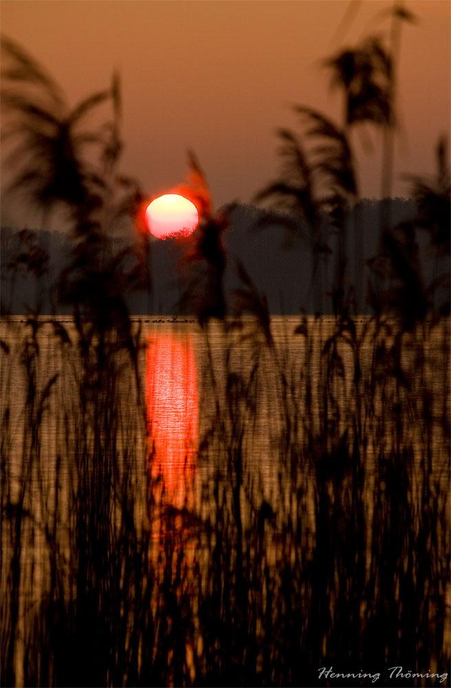 Sonnenuntergang am Einfelder See