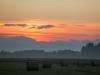 Morning sun III