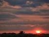Sonnenuntergang in den Dünen von Blavandt