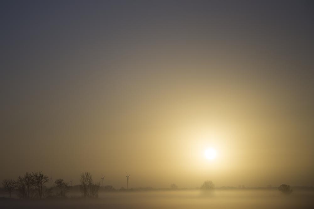 Nebel-Räder